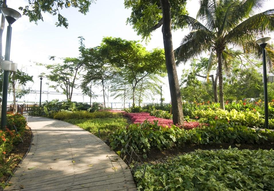 Áreas verdes pedem cuidado o ano inteiro, saiba como cuidar