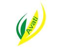 Logo da empresa AVATI
