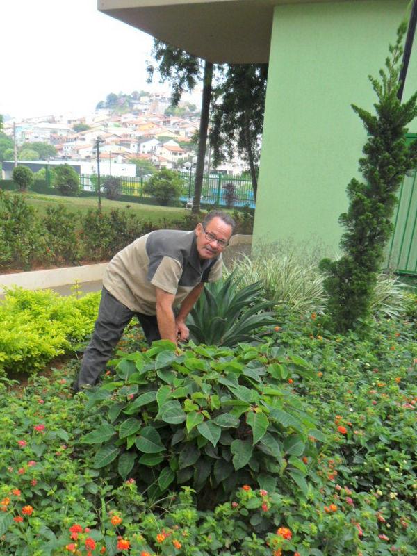 Foto - Serviço de Jardinagem