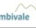 Logo da empresa Ambivale