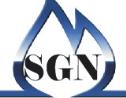 Logo da empresa Grupo sgn serviços para gás natural
