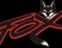 Logo da empresa Hidrofox Desentupidora Dedetizadora