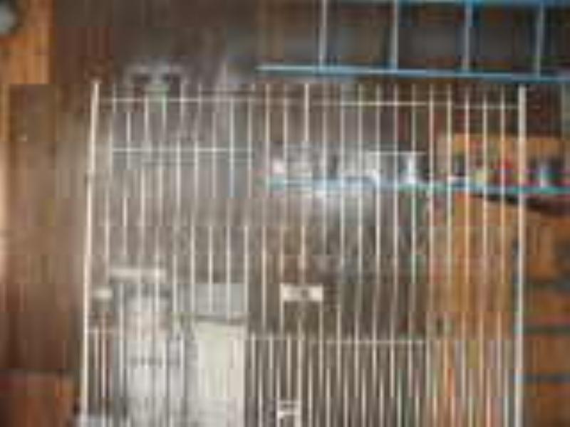 Foto - Reforma de Portão