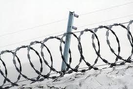 Foto - Concertina- Proteção Perimetral