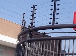 Foto - Cerca Elétrica