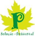 Logo da empresa Plátano Solução Ambiental