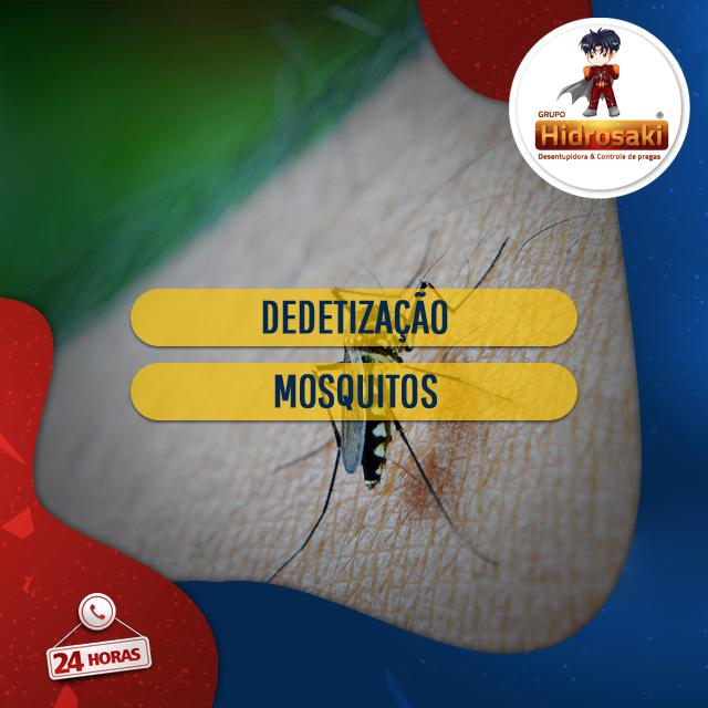 Foto - Dedetização de mosquitos. livre-se dos mosquitos perturbadores com a dedetização evitando-se inúmeras doenças contagiosas transmitidas pelos mosquitos aos seres humanos.