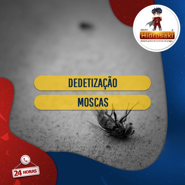 Foto - Dedetização eficaz contra as moscas em geral. A dedetização contra as moscas tem como objetivo exterminar e acabar com a propagação da espécie no local através de métodos eficazes em sua empresa ou residência.