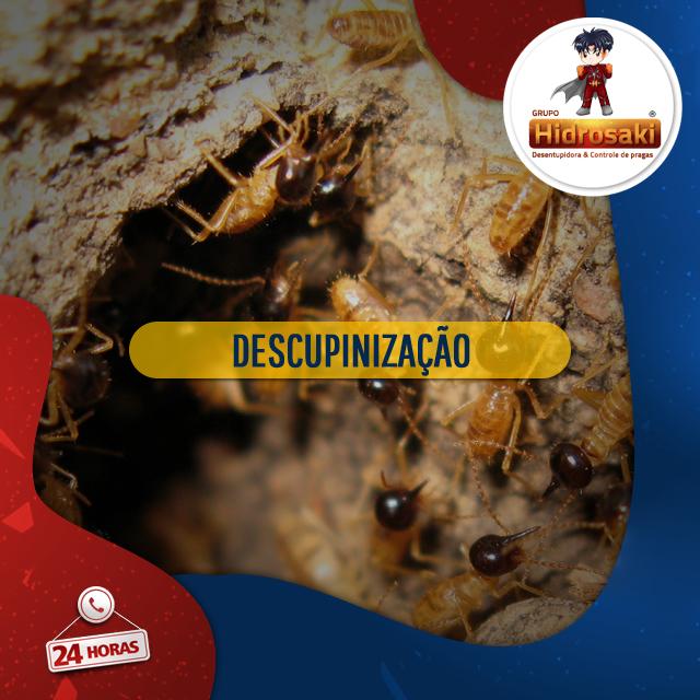 Foto - Descupinização com o extermínio total de cupins de madeira seca e solo nas empresas e residências! A descupinização é um tratamento específico para acabar com cupins infiltrados em solos, madeiras e entre outros locais semelhantes.