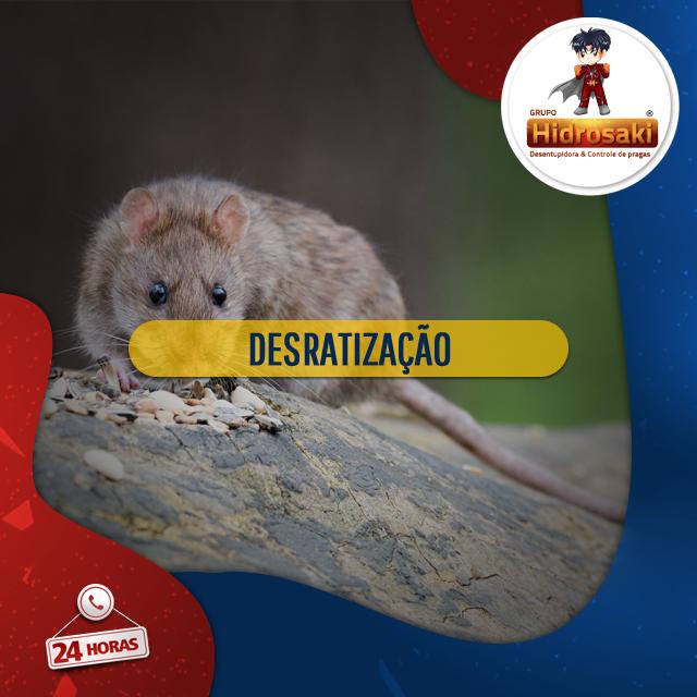 Foto - Desratização para a eliminação de ratos, bactérias e vírus transmitidas através desses roedores, como ratos, camundongos e ratazanas que são considerados uma das pragas mais perigosas existentes e podem levar a óbito.