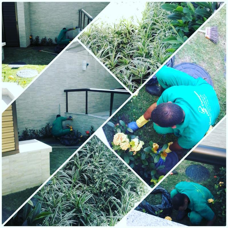 Foto - cuidando com carinho do jardim