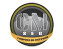 Logo da empresa Grupo CMSEG